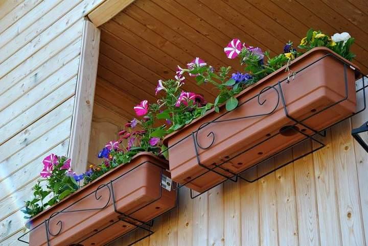 Цветы в ящиках на балконе: английский сад в родной квартире
