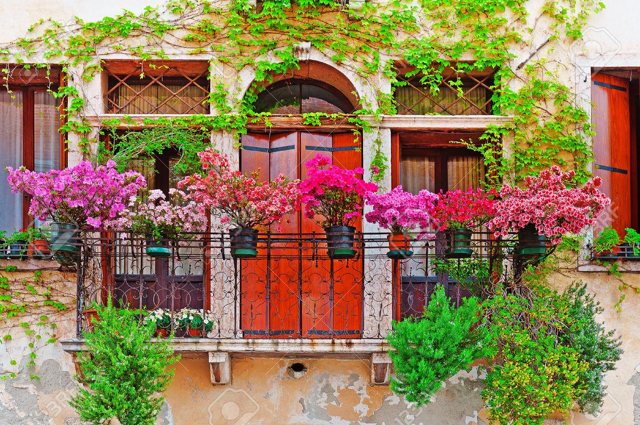 Украсить балкон цветами - лучшее решение лета (60 фото).