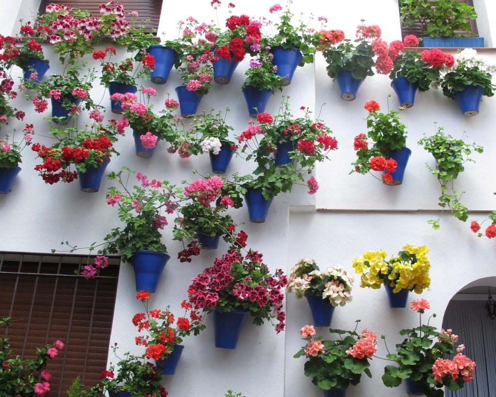 Цветы в настенных горшках