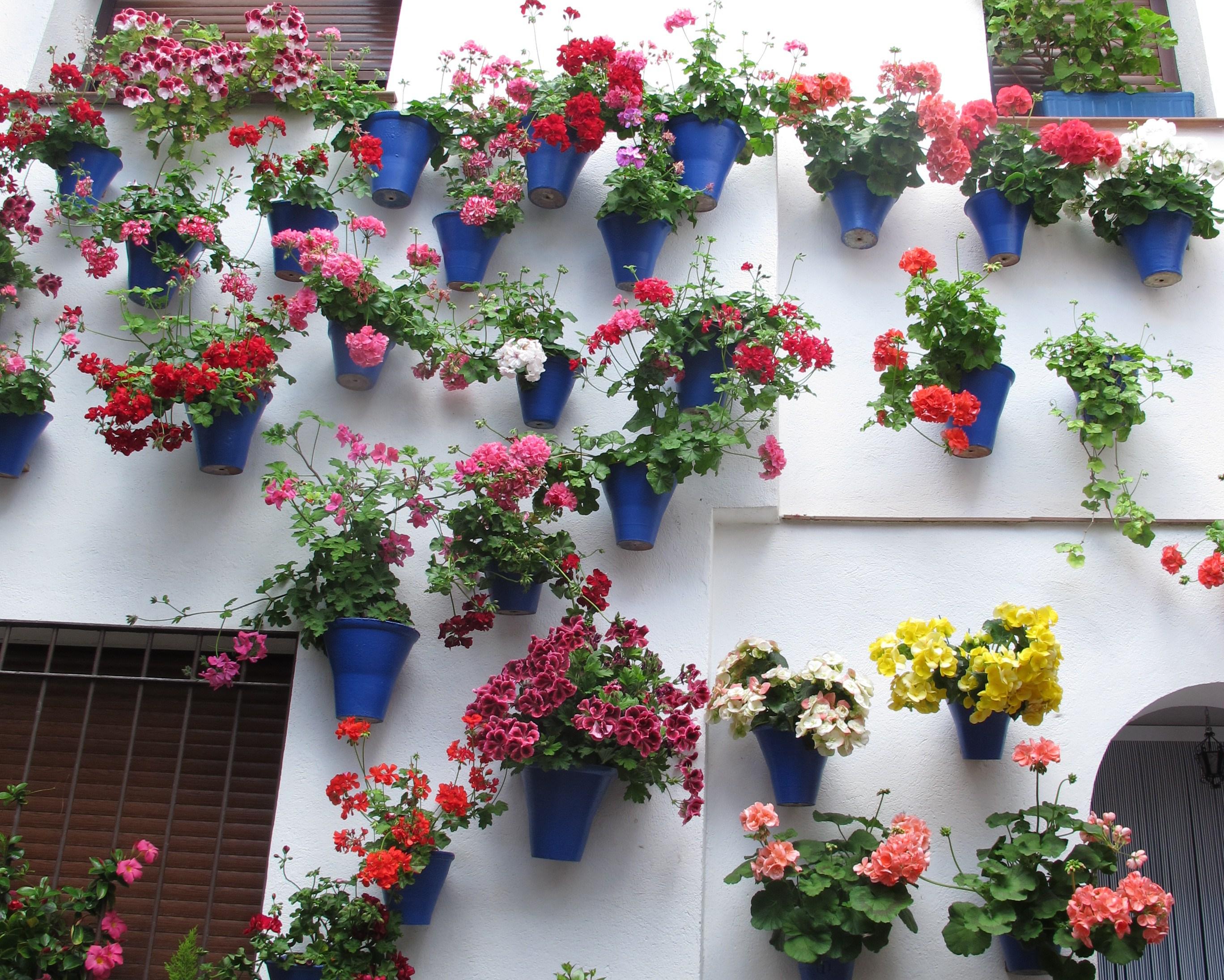 Фото подставок для цветов из металла