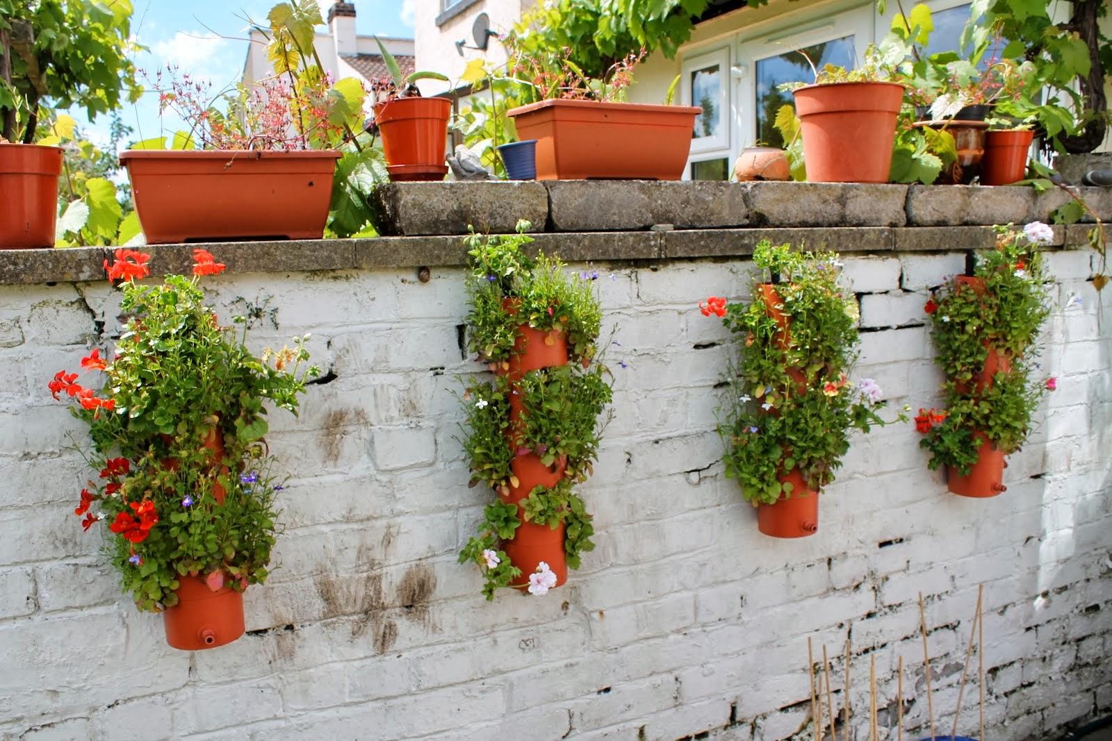 60 for Compound garden designs