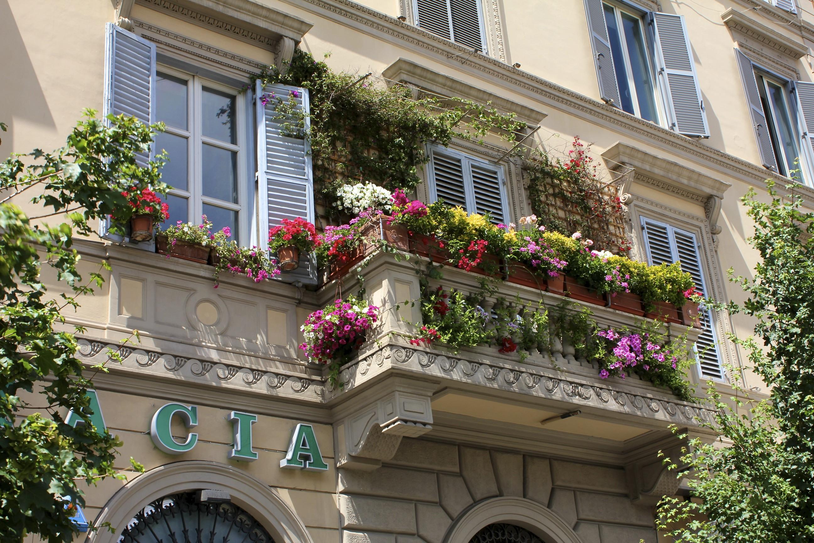 Украсить балкон цветами - лучшее решение лета. обсуждение на.