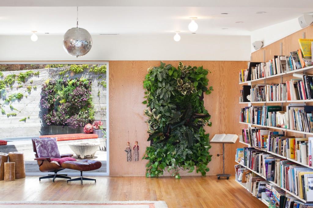 растения для дома в интерьере