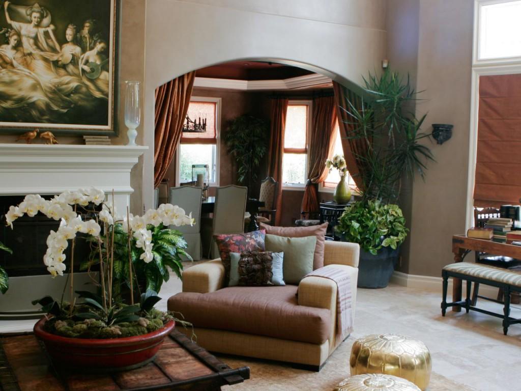 Гостиная с комнатными растениями