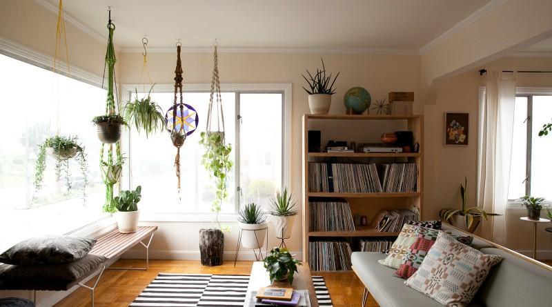 Подвесные кашпо с комнатными растениями в гостиной
