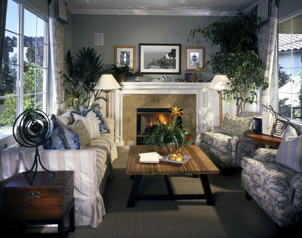 Гостиная с комнатными цветами
