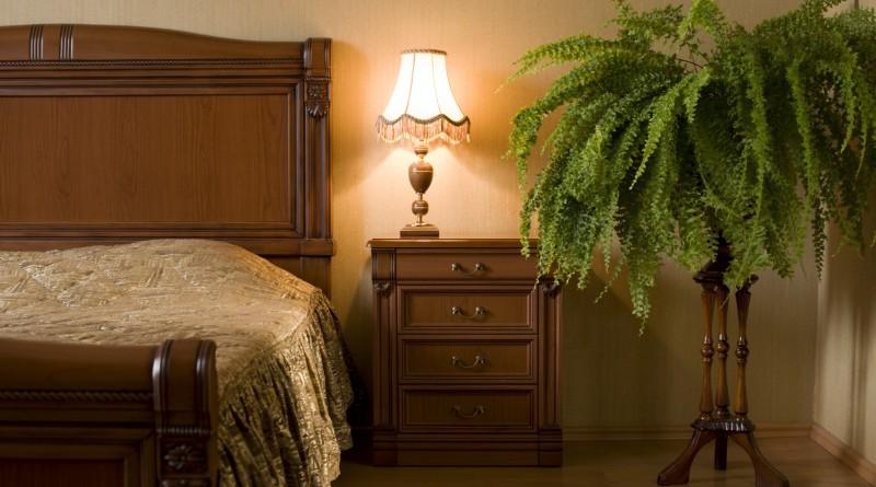 Спальня с комнатными растениями