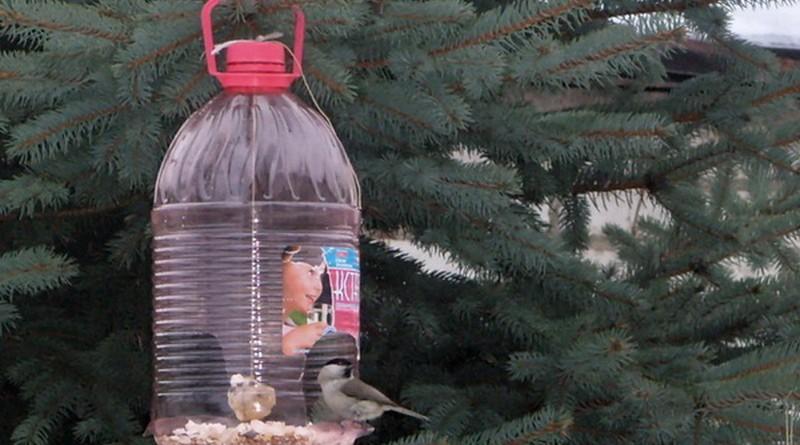 Скворечники из пластиковых бутылок своими руками