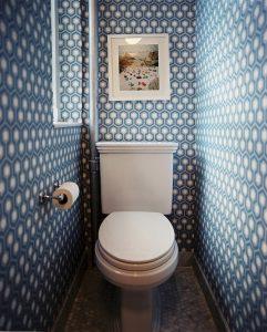 синий туалет