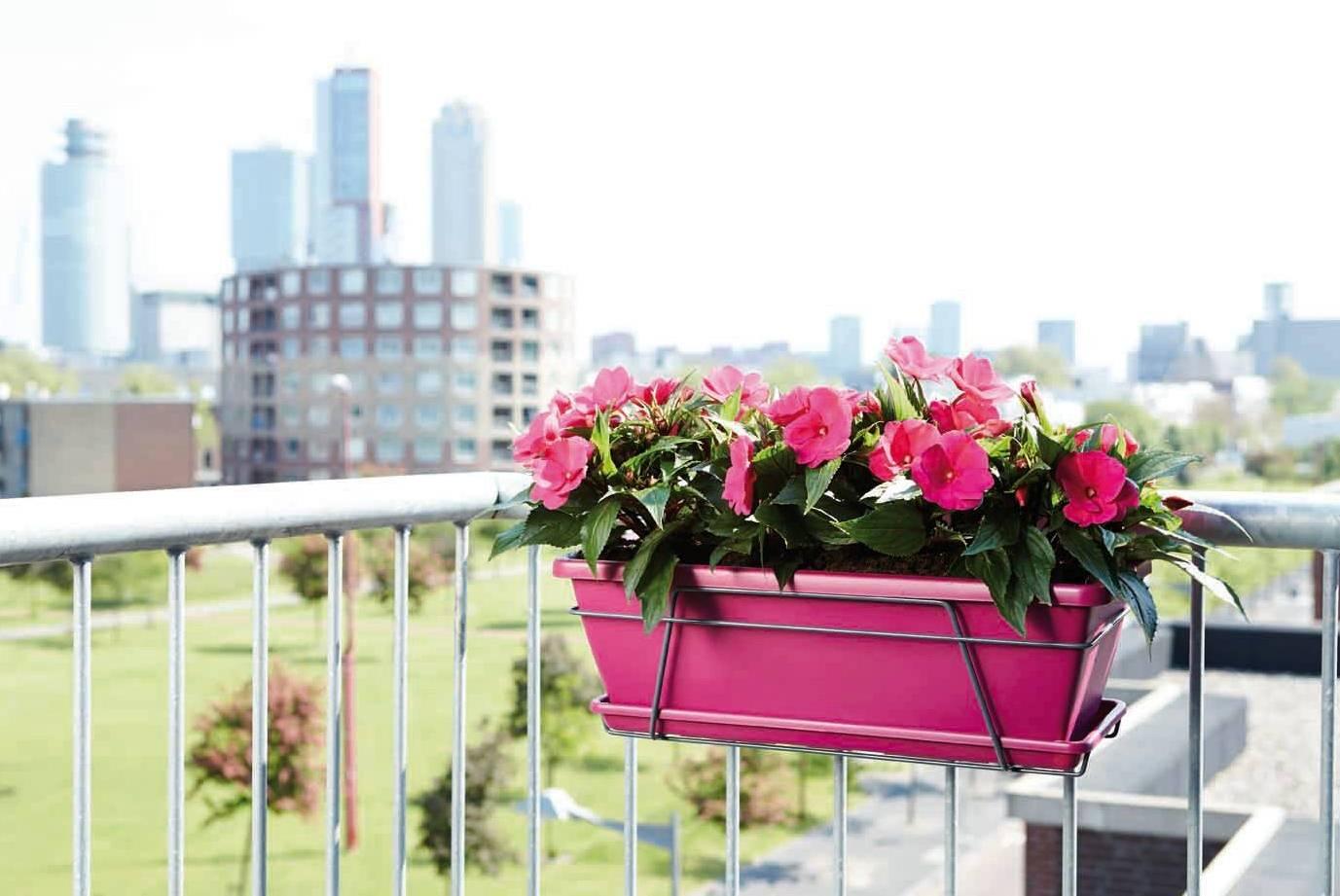 Как выбрать и разместить балконный ящик для цветов (+самодел.