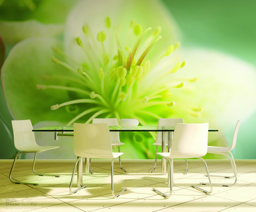 Фотообои на кухне цветы 4