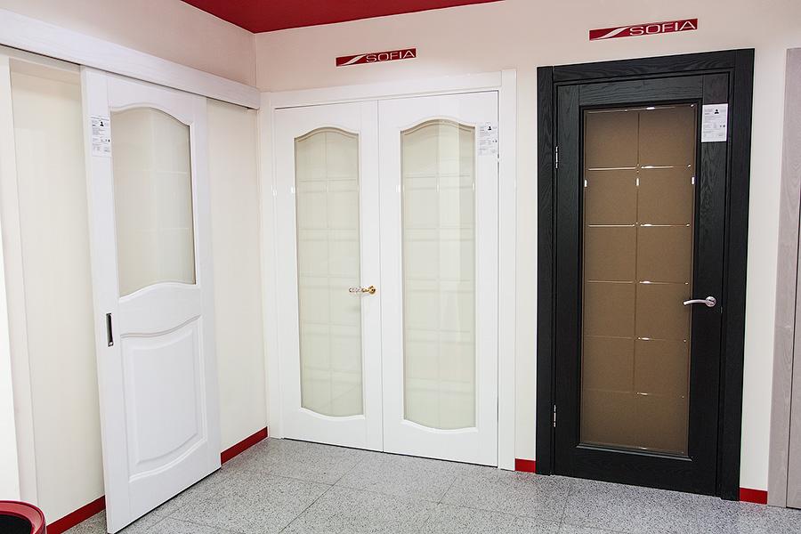Современные двери Софья