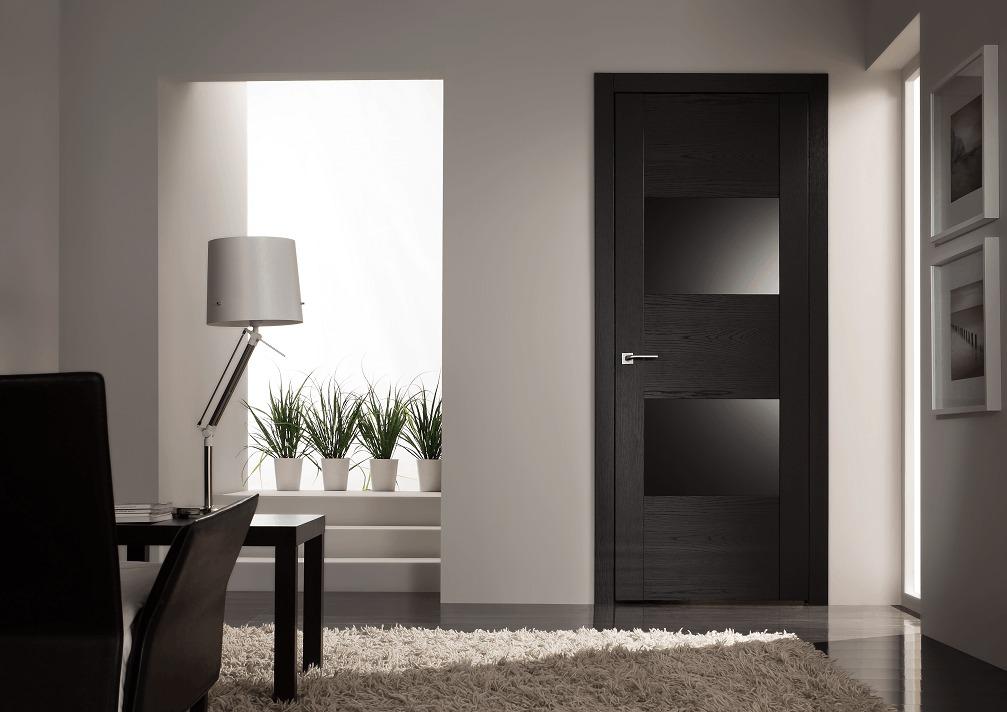 Черные двери в интерьере