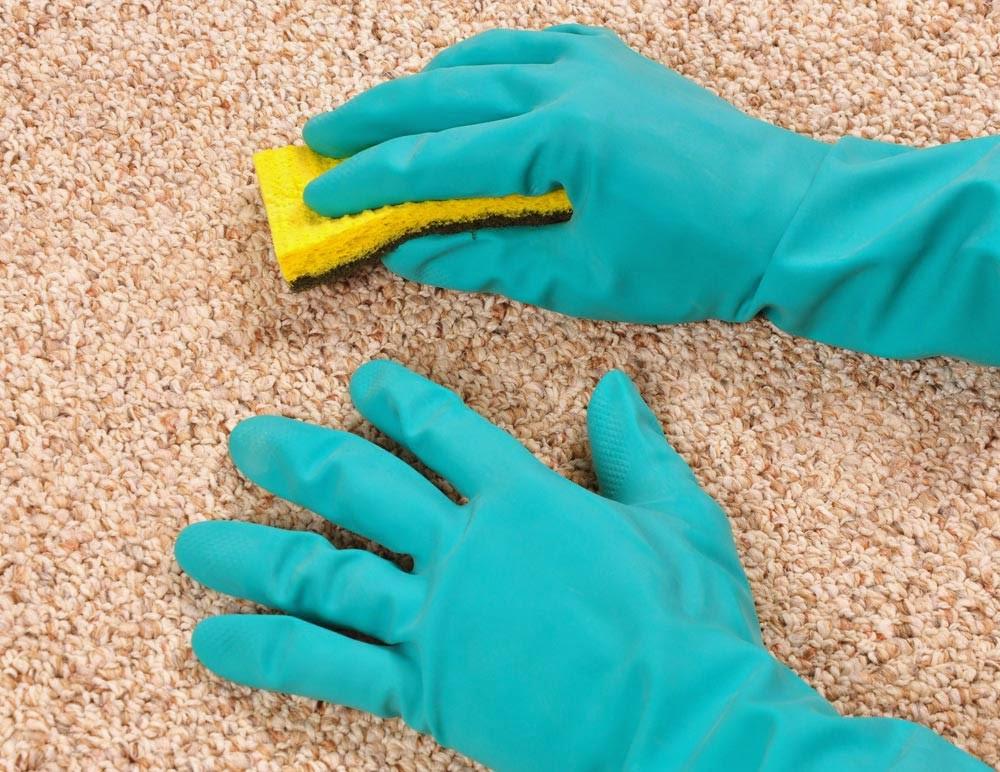 Как очистить ковер от скопившейся шерсти