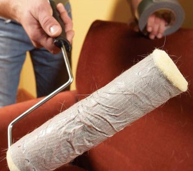 Как собрать шерсть кошки или собаки с дивана и ковра