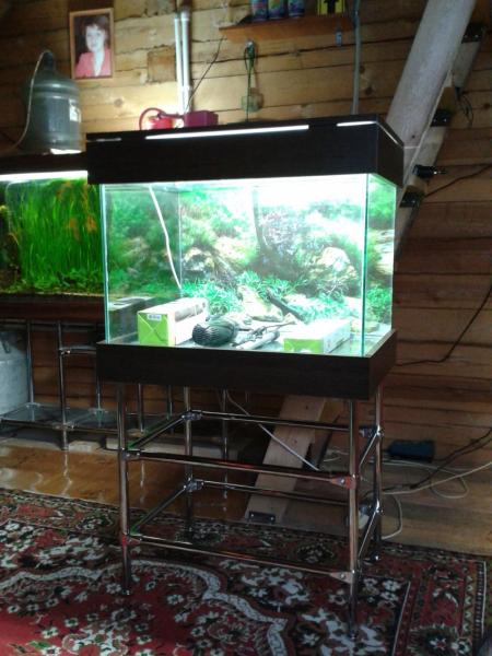 Как сделать аквариум своими руками в фото