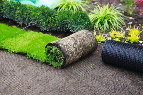 Укладка газона – эффективный способ облагородить участок в фото