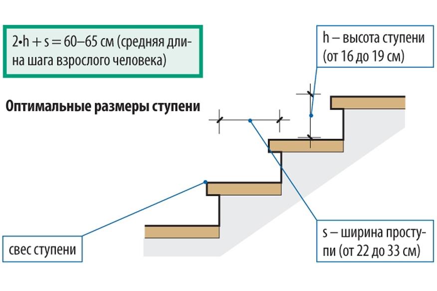 Размеры ступеней лестницы в подвал