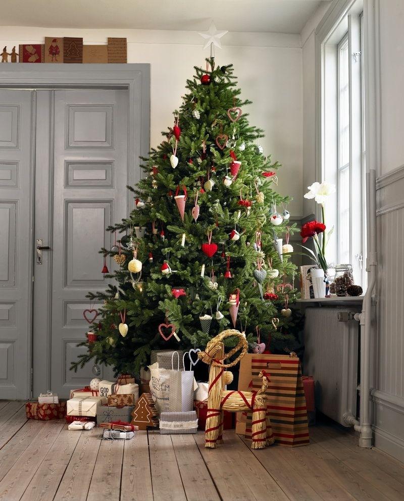 Лучшее место для елки: 5 вариантов идеального расположения