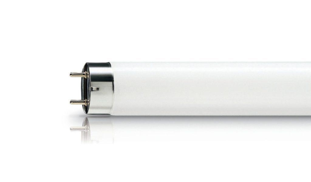 люминесцентная лампа для цветов