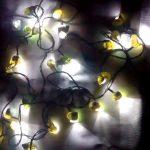 Использование ракушек в дизайне: ТОП-5 оригинальных идей