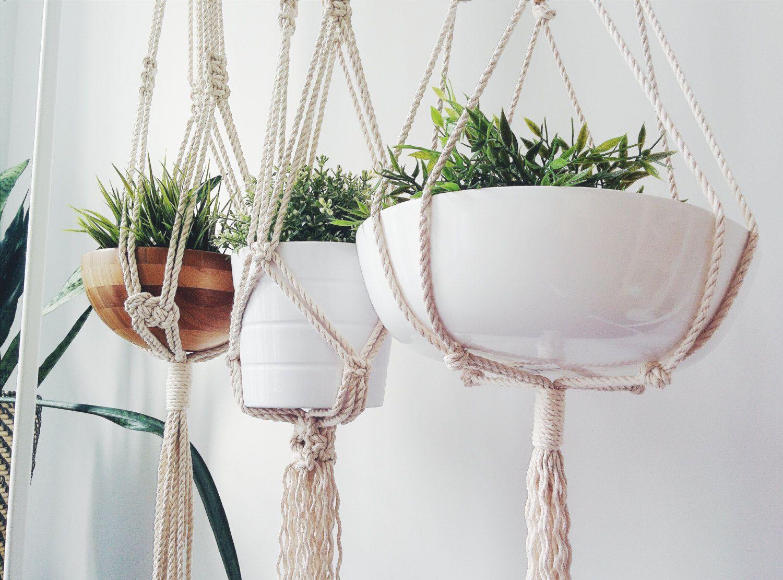 5 нестандартных вариантов разместить комнатные цветы в интерьере