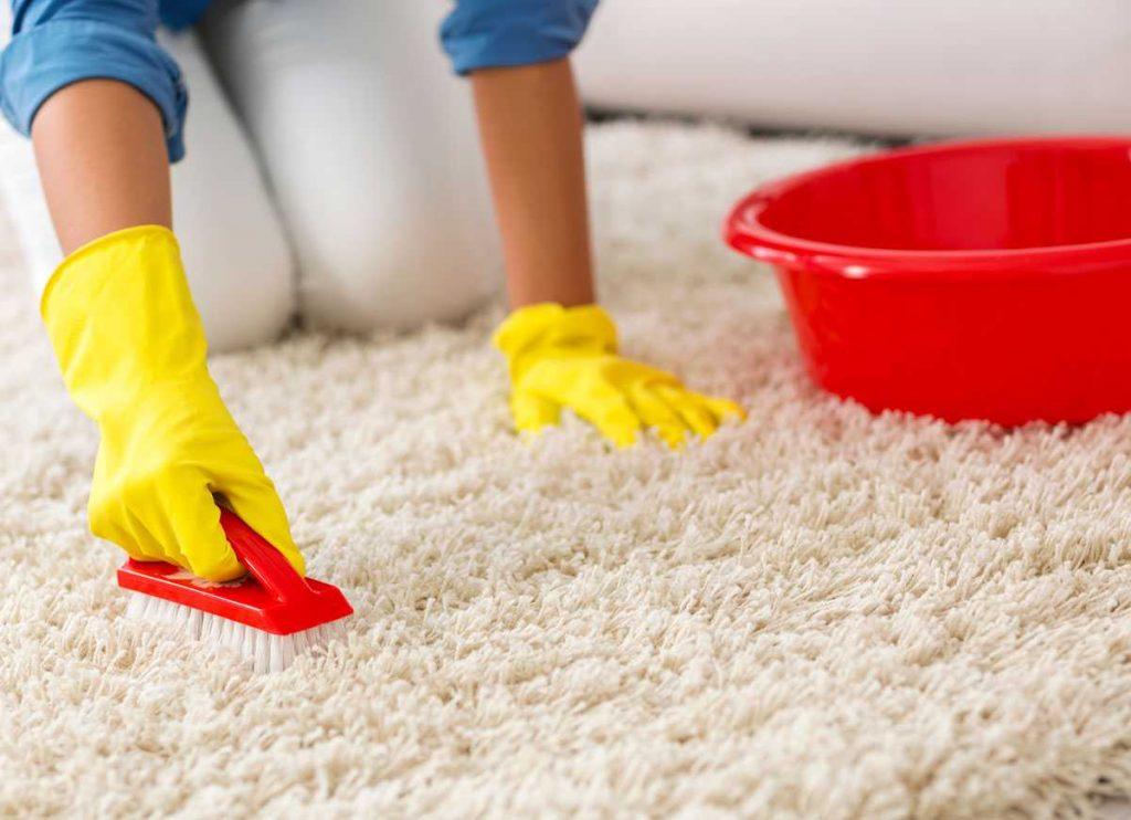Как очистить ковер или ковролин от шерсти