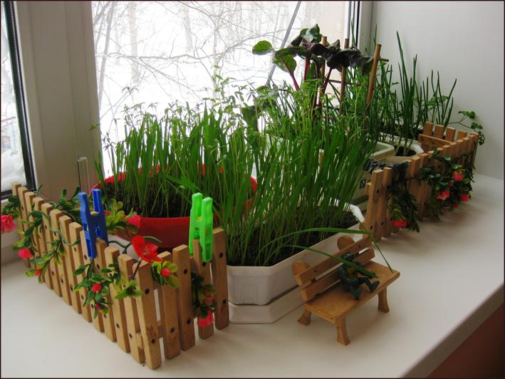 Домашний огород на подоконнике - как сделать хобби стильным?