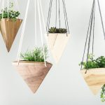 Как использовать комнатные растения в качестве цветового акцента?