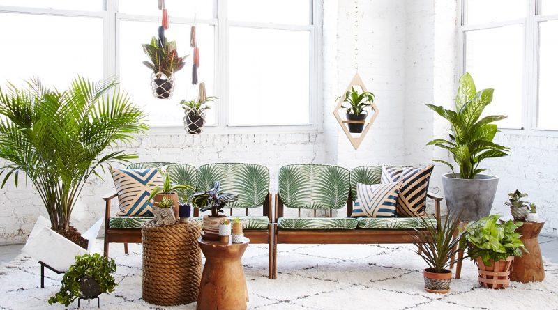 Тренд 2019: как использовать живые растения чтобы было стильно