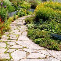 Садовые дорожки: какой вариант покрытия выбрать в 2019?