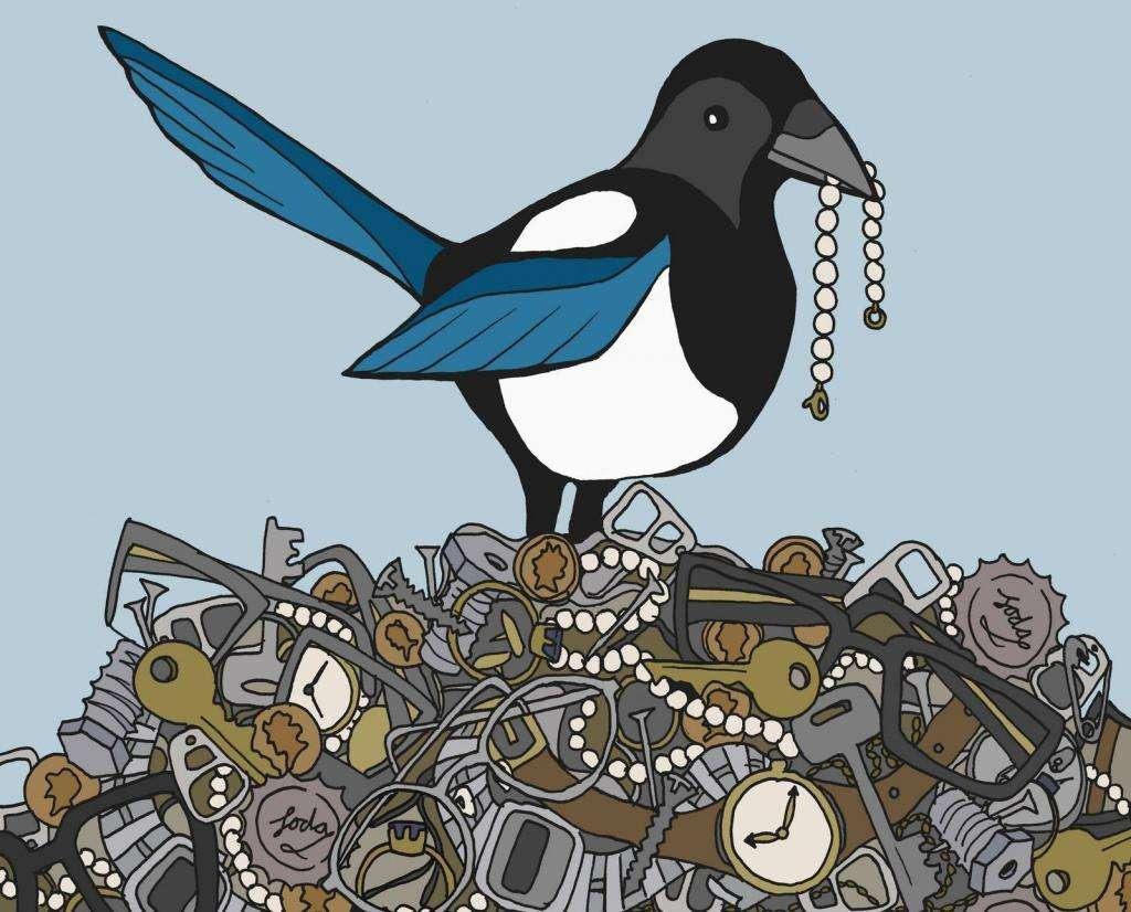 Символика фен-шуй: птицы в доме