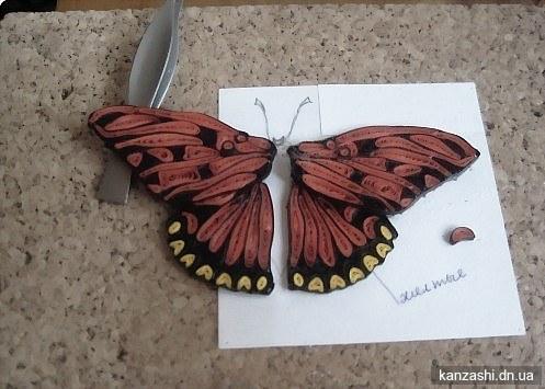 Бабочка: как сделать из бумаги, квиллинг   355x497