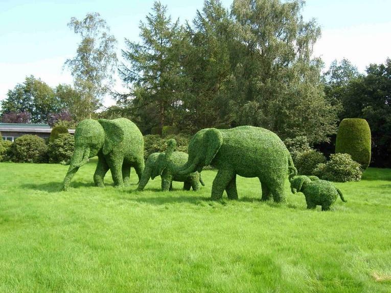 Топиарные сады: удивительные скульптуры из живых кустарников и растений (45 фото)