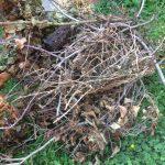 Что делать с засохшими ветвями на даче: самодельный измельчитель из болгарки
