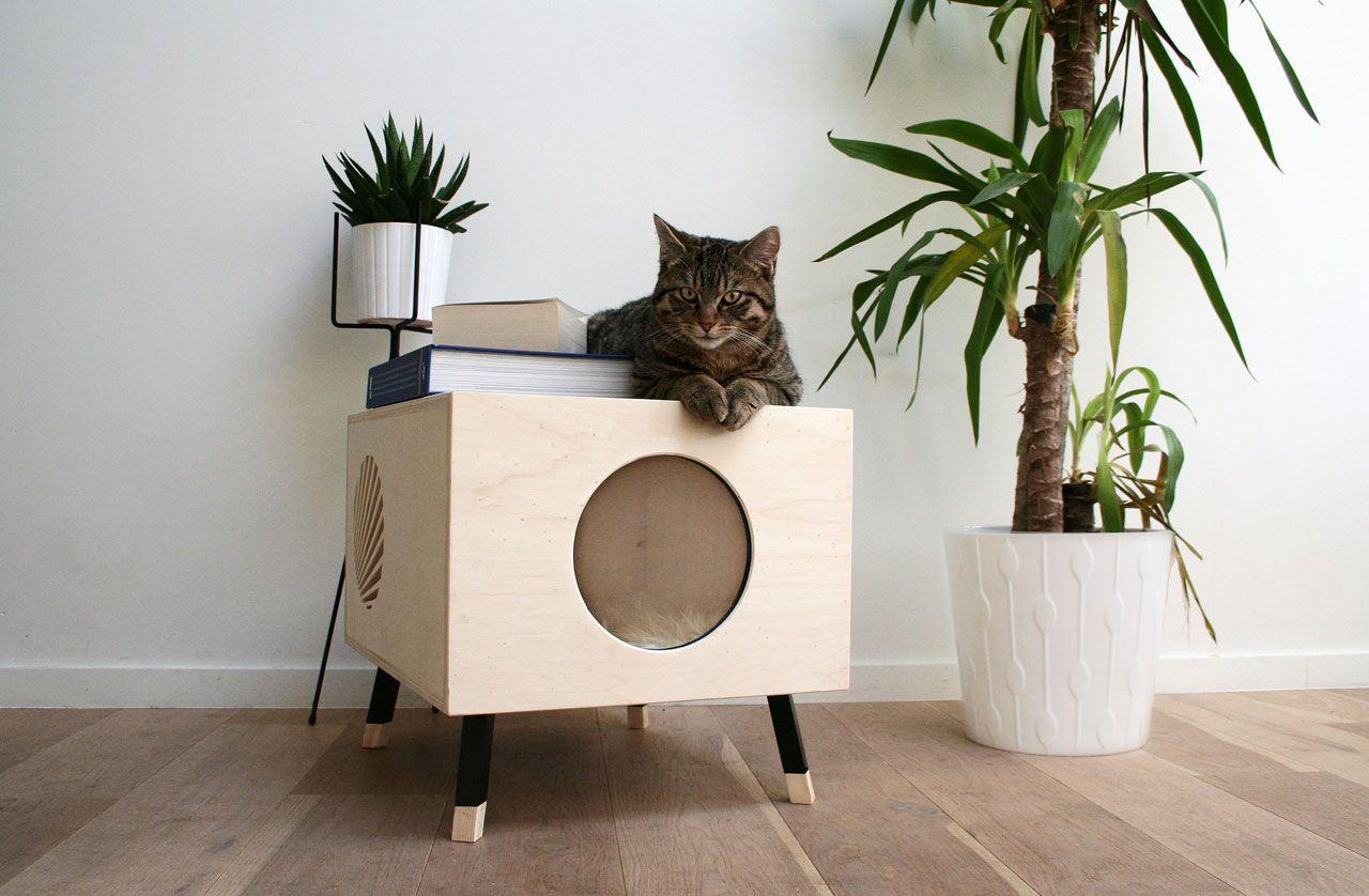 5 интерьерных идей если в доме живет кошка