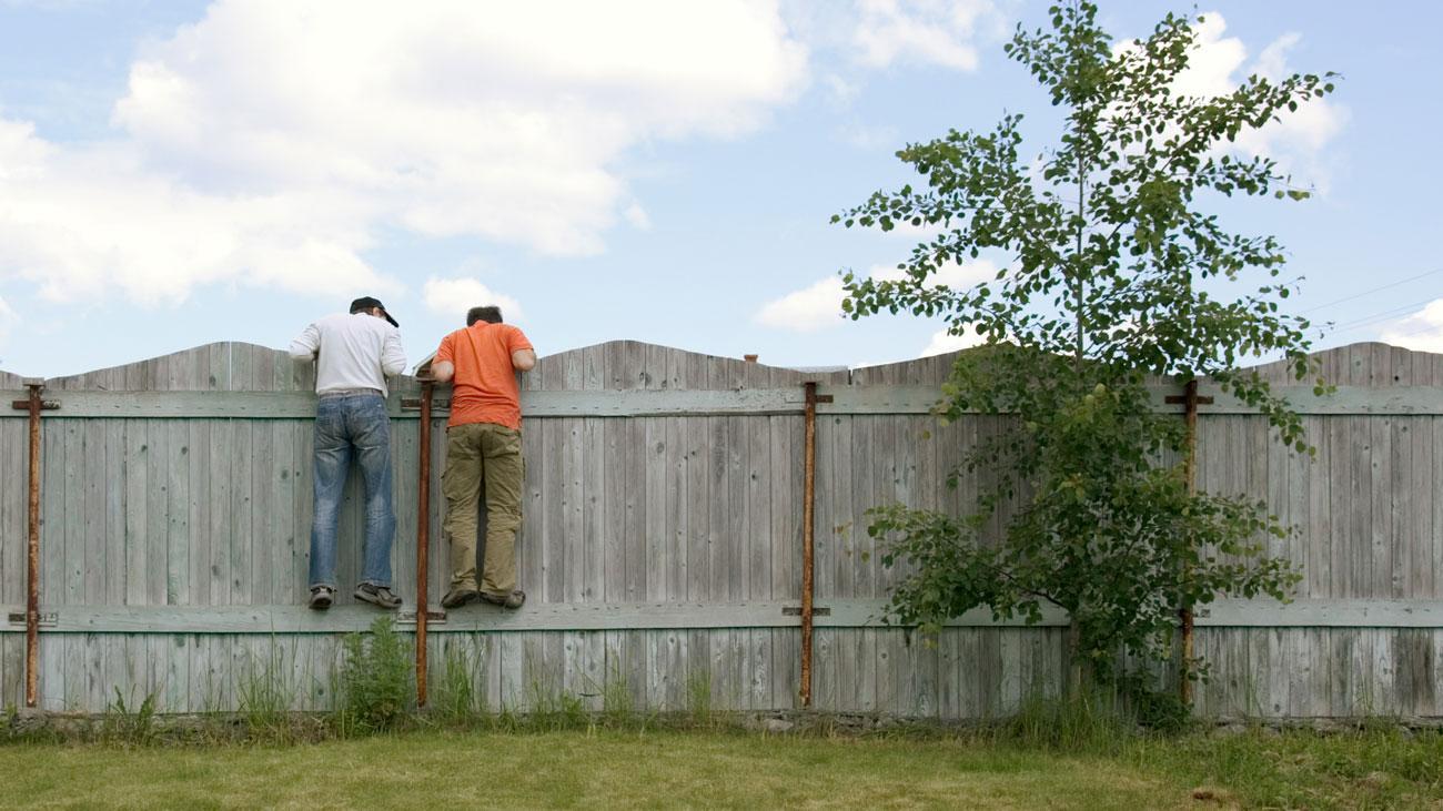 Как отгородиться от взглядов соседей на дачном участке?
