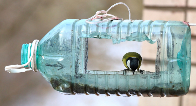 Кормушки для птиц из пластиковых бутылок своими руками: мастер-класс с фото