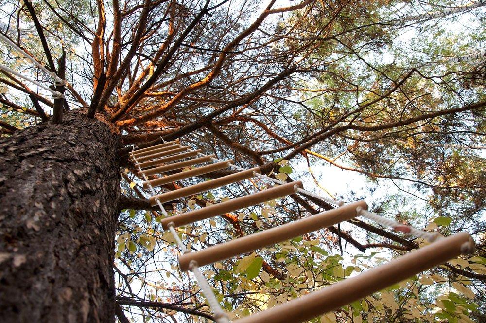 Характеристика и особенности веревочной лестницы