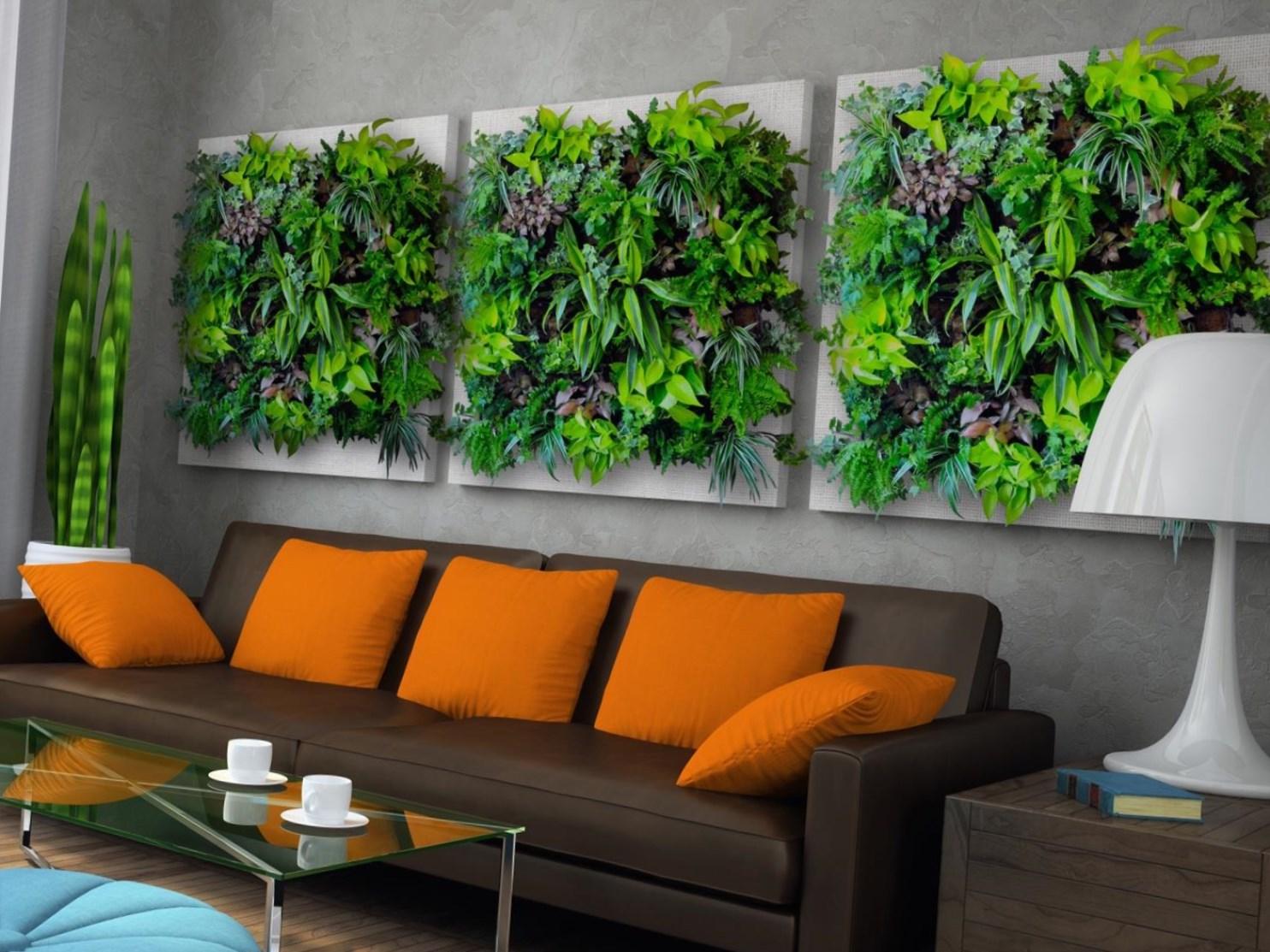 [Растения в доме] Фитостены: варианты, советы, фото
