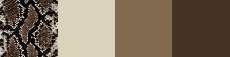 Бежево-коричневая гамма
