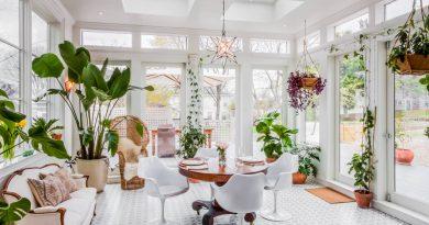 Комнатные растения в интерьере: для кухни, гостиной и ванной