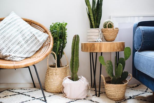 [Творчество дома] 5 экологичных идей для декора интерьера — просто и оригинально