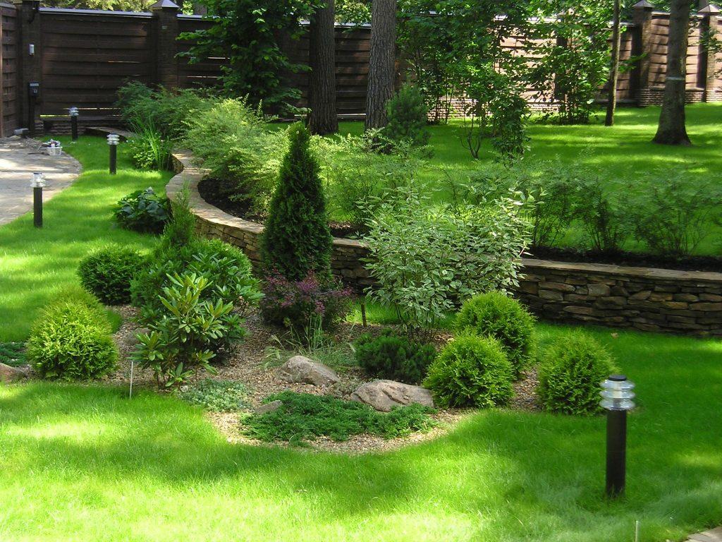 Как можно высаживать деревья и кустарники для ландшафтного дизайна