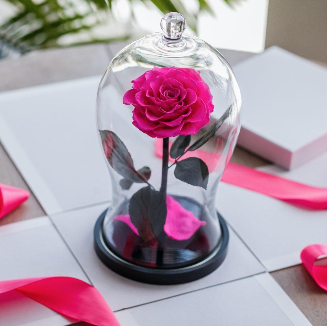 Роза в колбе как подарок для девушки